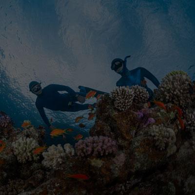 Apnee sous marine